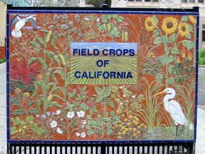 Field crops of California sign